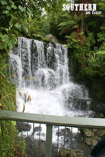 Rainbow Springs Nature Park Rotorua New Zealand - Gluten Free Coeliac Friendly Travel Reviews