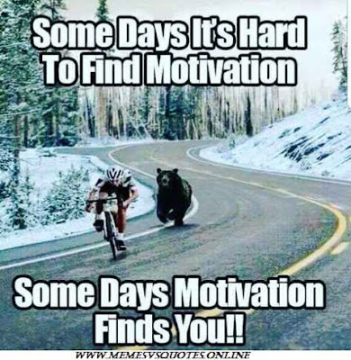 motivation finds you