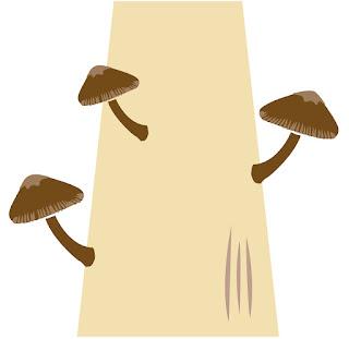 樹上長香菇