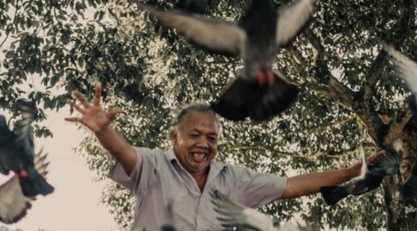 Dicerai bini & dikhianati kawan, burung jadi peneman