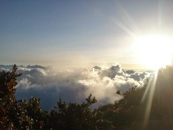 Taman Nasional Gunung Gede Pengarango