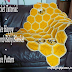 Crochet Tutorial: Bee Happy Honeycomb Baby Blanket Free Pattern