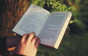 health benefits of reading books