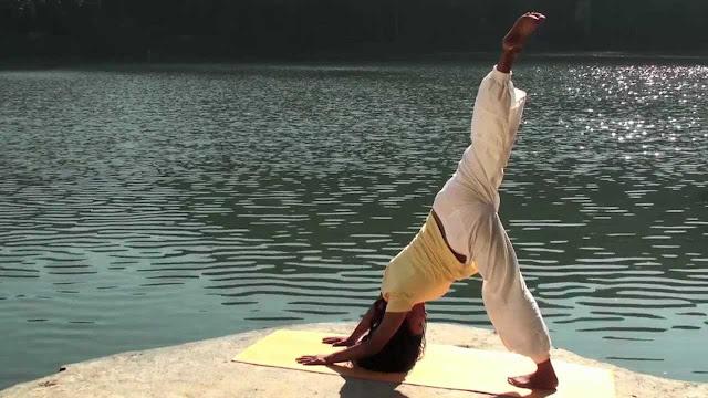 yogi yogini yogin