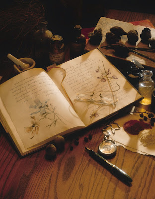 Several small items from a journal with sketches to herbs lay on a wood table