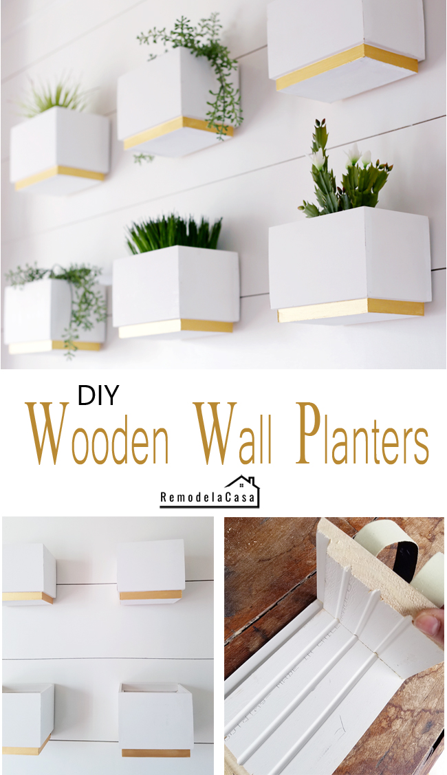 Spring decor ideas - Plant gallery wall