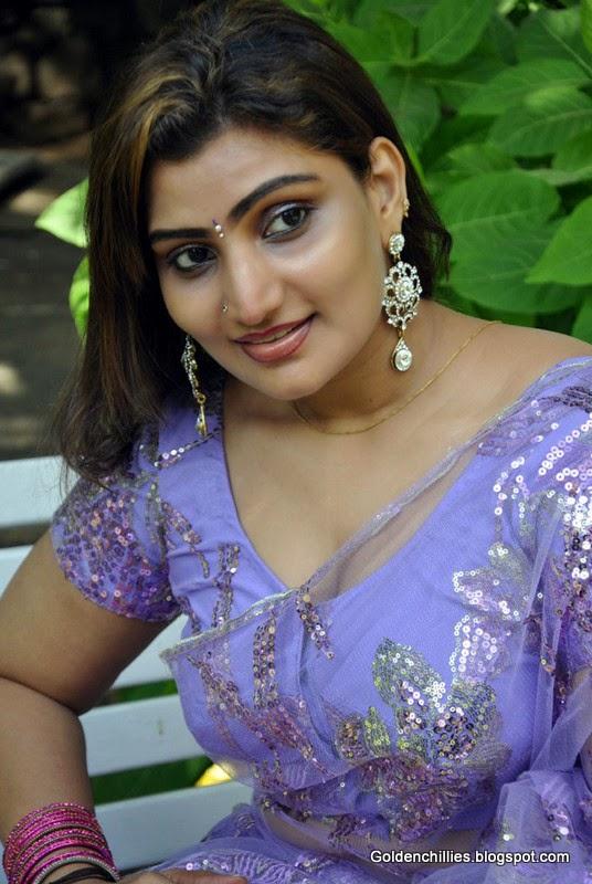 South Indian Aunties In Transparent Saree Hot Stills -8084
