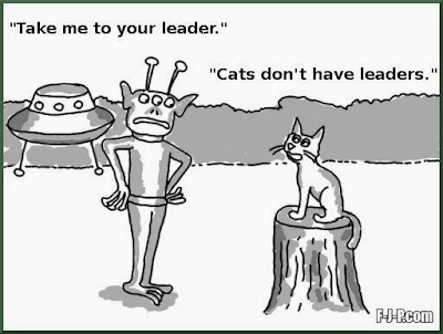 Funny alien visitor cat joke cartoon picture - Take me to your leader.  Cats don't have leaders