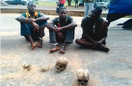 Herbalist Who Bought Two Human Heads For N10,000 In Oyo