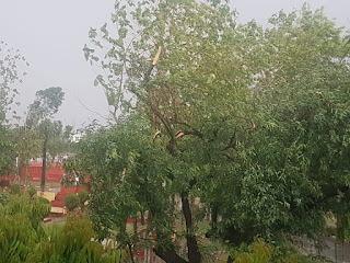 storm-in-darbhanga