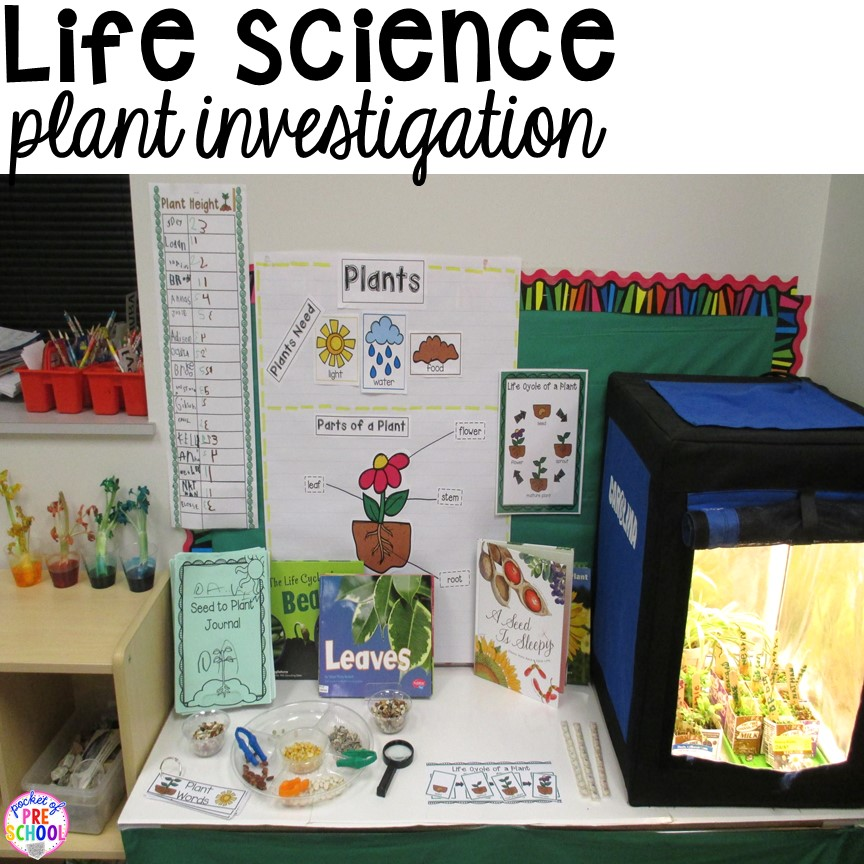 Enjoyable How To Set Up The Science Center In Your Early Childhood Home Interior And Landscaping Mentranervesignezvosmurscom
