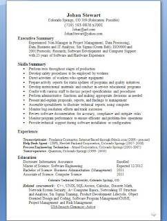 business analyst resume summary in word format free download - Business Analyst Resume Summary