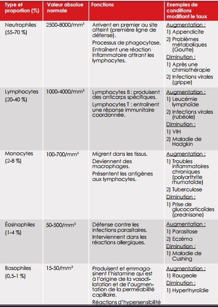 Leucocytes élevés