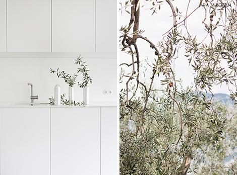 Mit Olivenzweigen dekorieren - Italienurlaub