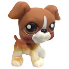 Littlest Pet Shop Purse Boxer (#25) Pet