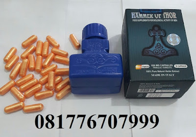 agen hammer of thor banjarmasin 081776707999 hammer of thor asli