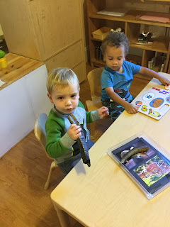 jewish preschool atlanta intown preschool the 5 senses of the high holidays 986