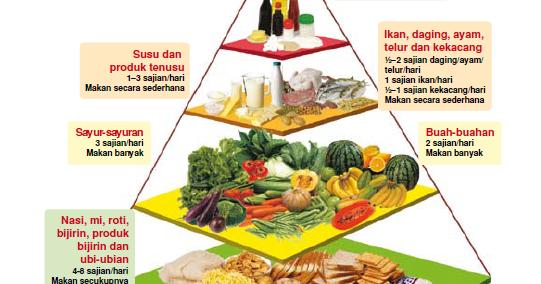 Konsep Diet Orang Sakit