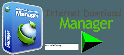 Internet Download Manager 6.25 Build 21 (free)