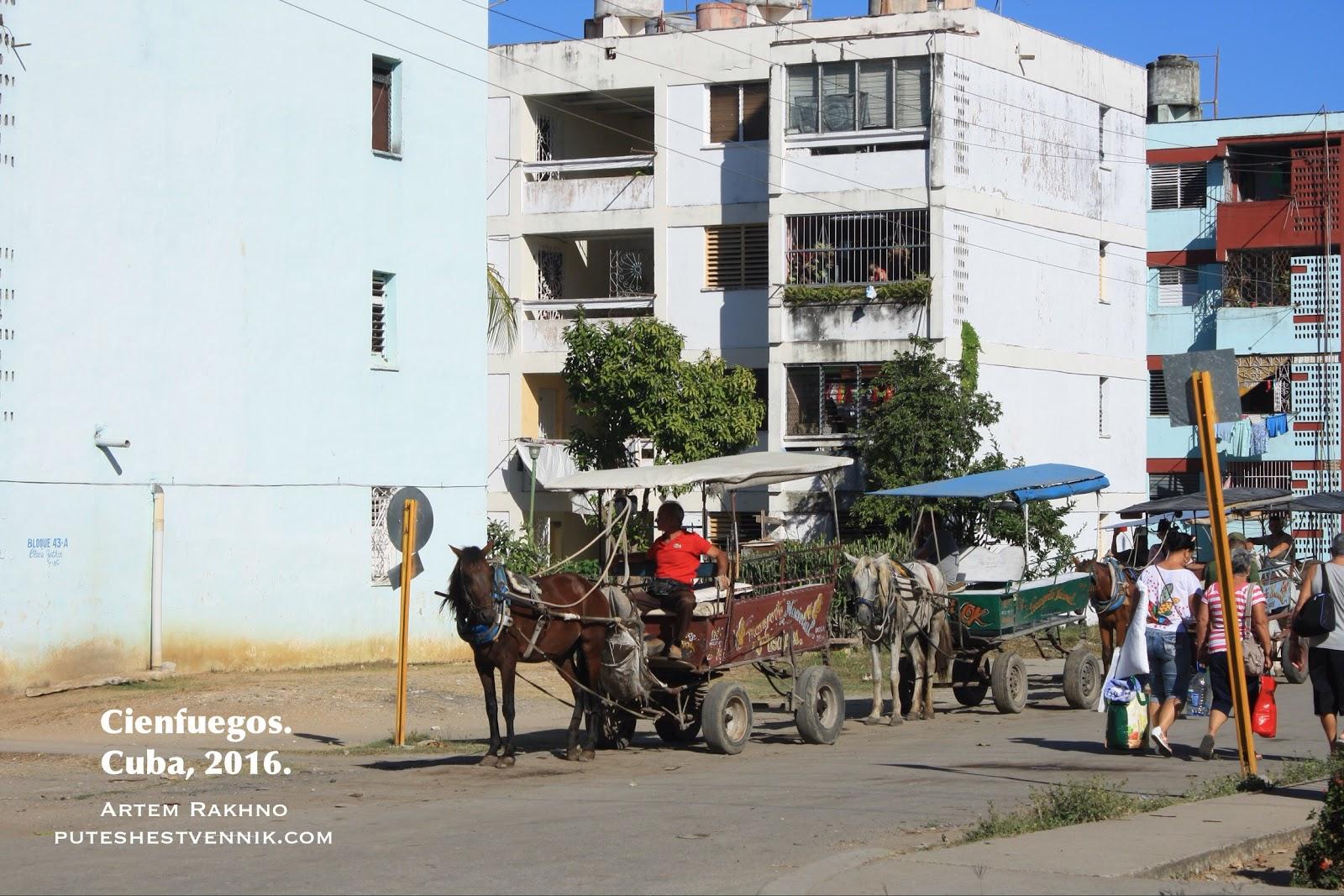 Извозчики с лошадьми в Сьенфуэгосе