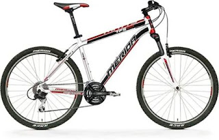 Stolen Bicycle - Merida Mountain Bike