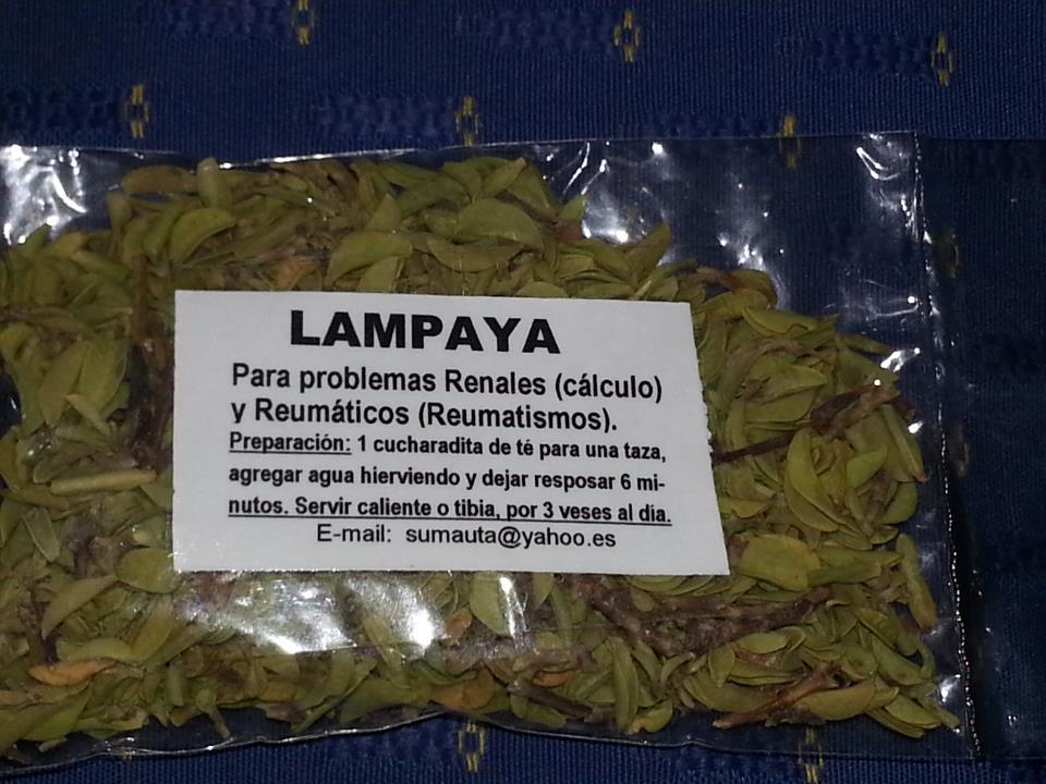 Hierbas Medicinales Aymaras