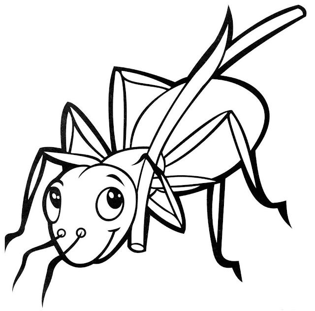 Gambar Mewarnai Semut - 2