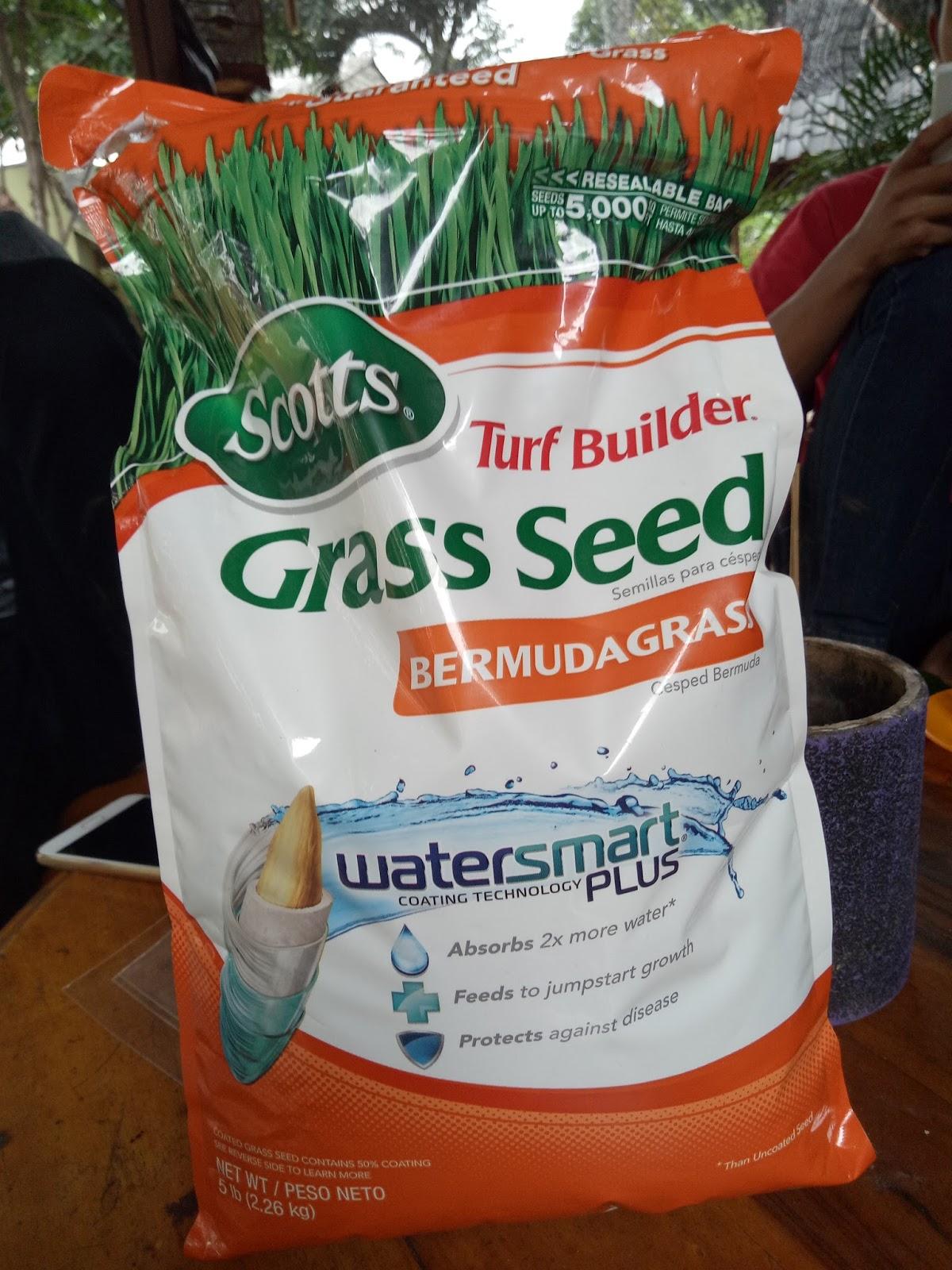 Jual Biji Rumput Benih Bibit Grass Seed Scotts Sedia Jenis Segala Macam Untuk Seluruh Wilayah Bisa Di Order Kirimkan Nama Latin Dan Ilmiah Ke