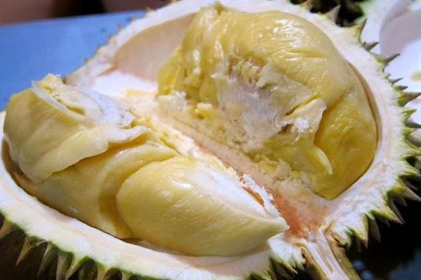 Buah Durian Lokal Ngebel Menjadi Favorit Wisatawan