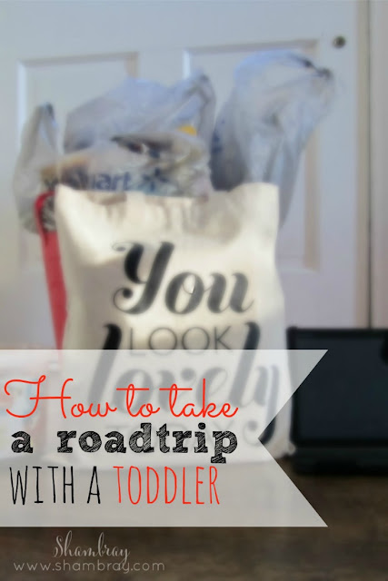 Check out these road trip tips and ideas when traveling with toddlers.