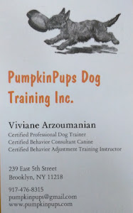 PumpkinPups Dog Training