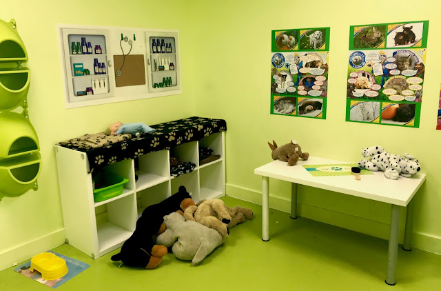 A green coloured vet shop with pictures on the walls, soft animals and some other play equipment at 360 Play Basildon