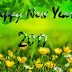 Happy New Year Images, Pictures, Wallpapers