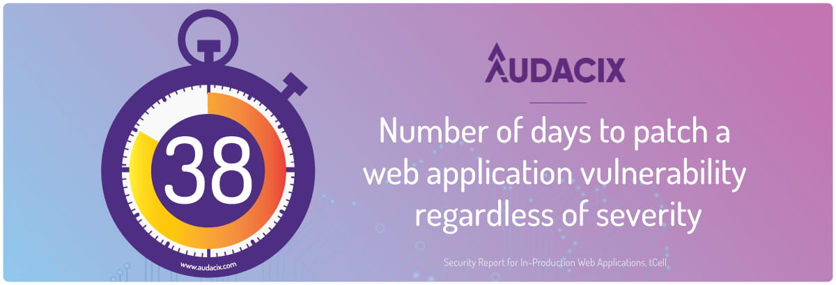 Find cybersecurity vulnerability in web apps