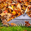 Five Ways To Save Energy This Fall