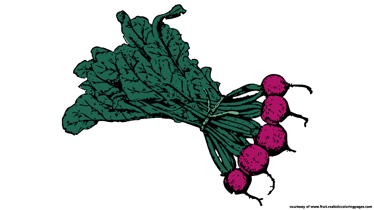 8 downloadable astonishing beetroot clipart fruit names a z with