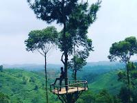 Bukit Senyum, Panorama Alamnya Bikin Wisatawan Tersenyum Puas