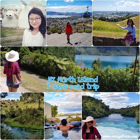 新西兰北岛三天自驾游