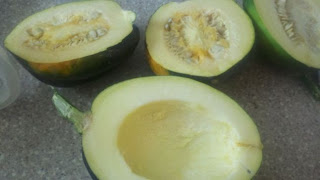 acorn squash, what to do with acorn squash, dehydrating vegetables, garden harvest,