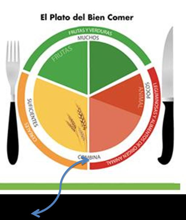 Alimentos Del Plato De Buen Comer Para Colorear Imagui