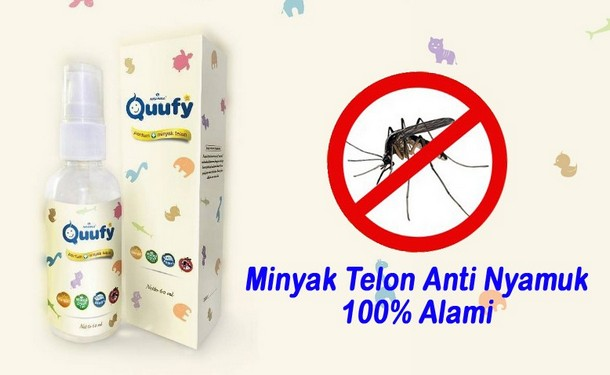 Minyak telon Quufy Anti Nyamuk