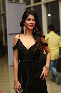 Kashish Vohra at Rogue Movie Audio Launch ~  (49).JPG