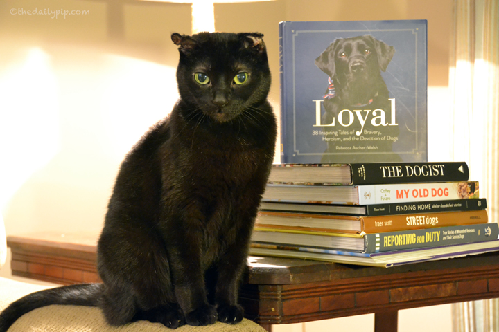 Rosie reviews Loyal: 38 Inspiring Tales of Bravery, Heroism, and the Devotion of Dogs