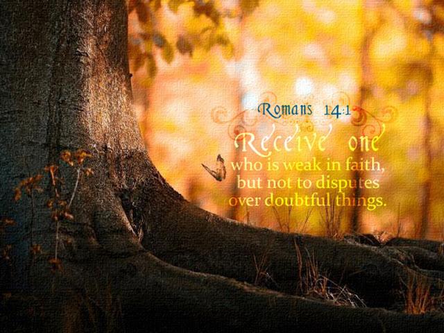Romans 14:1