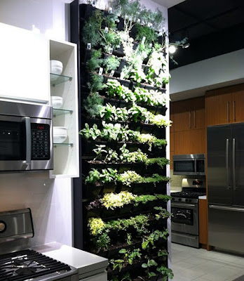 Vertical Herb Garden Next To Your Kitchen