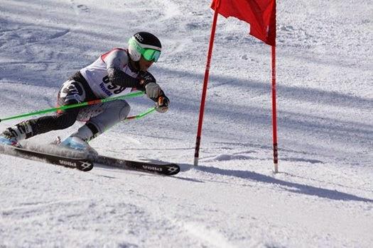 Skier Turning Left number 658