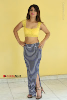 Cute Telugu Actress Shunaya Solanki High Definition Spicy Pos in Yellow Top and Skirt  0135.JPG