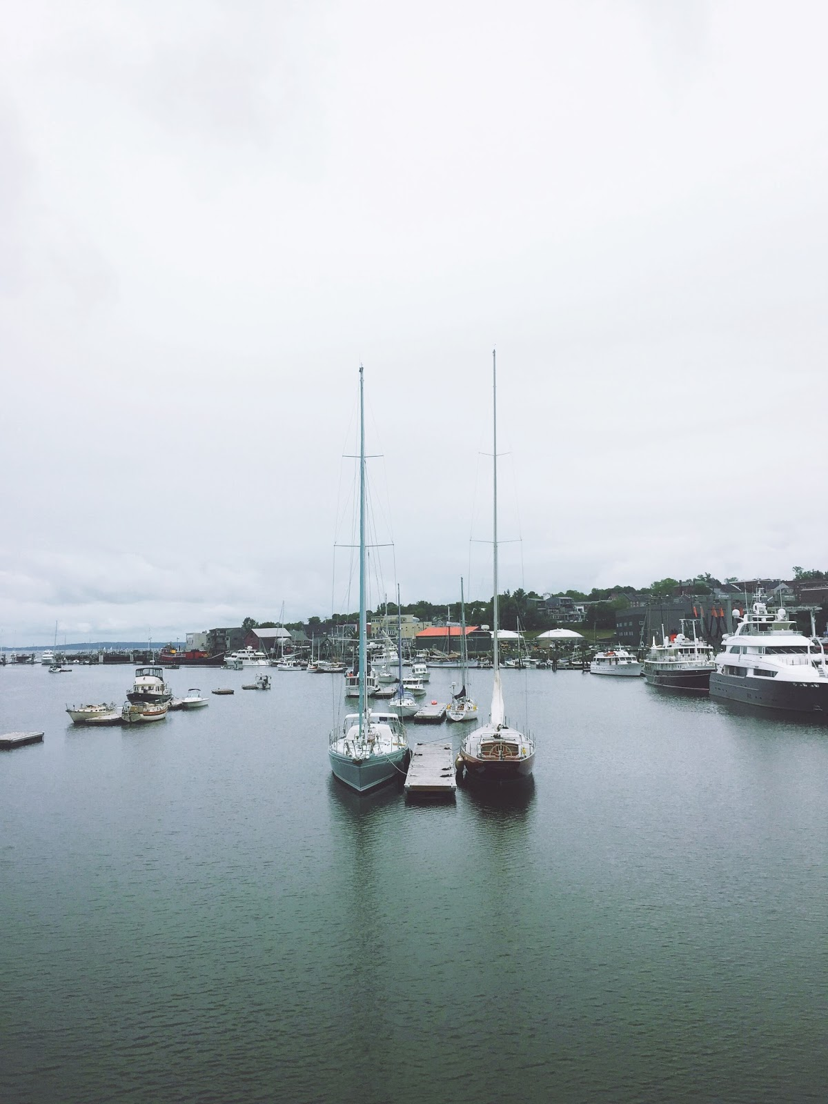 belfast maine harborwalk