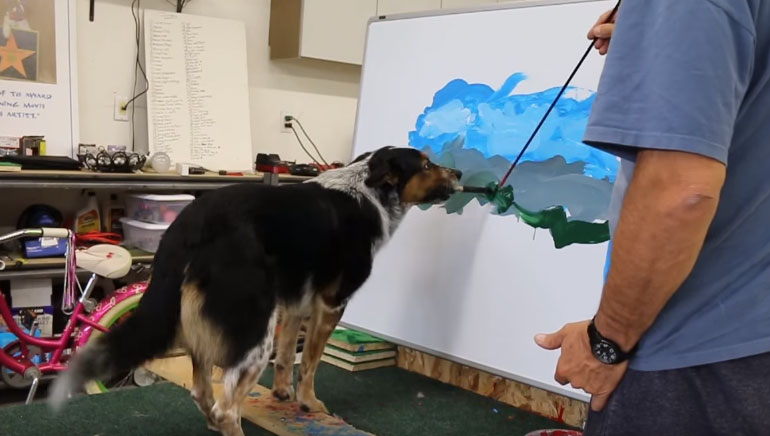 Jumpy Dog shows off painting skills Hits the Web