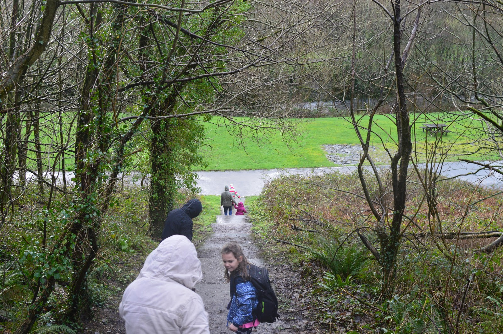 , Days Out:  Llys y Fran, Country Park and Reservoir Pembrokeshire